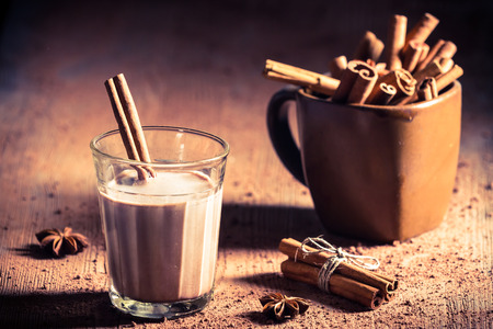 Cocoa milk with cinnamon bark photo