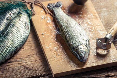 fish rearing: Closeup of freshly caught fish for dinner Stock Photo