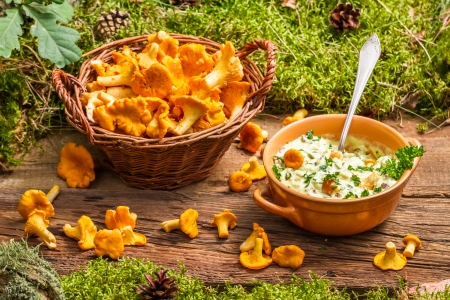 Chanterelles mushroom with cream and parsley are in the forest photo