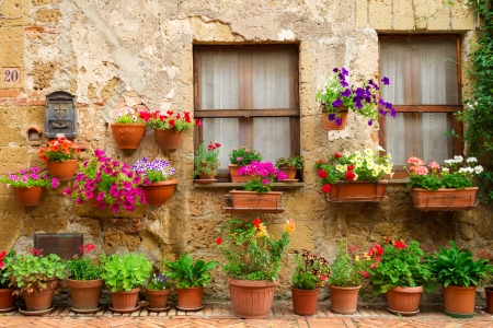 flower structure: Beautiful street decorated with flowers in Italy