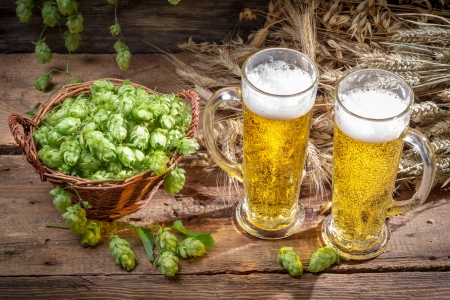 Kall öl omgiven av humle kottar