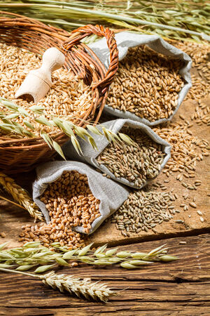 Rye, barley and wheat are the basis for good bread photo