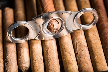 Closeup of cutting off cigar tip photo