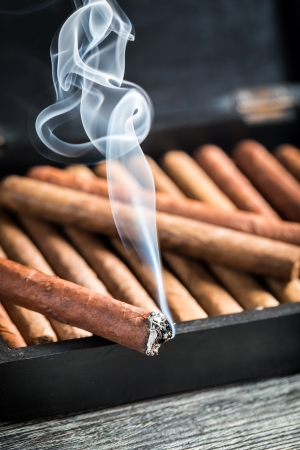 Burning cigar on wooden humidor full with cigars Stock Photo