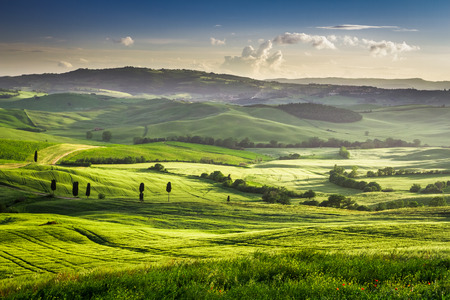 san quirico d'orcia: Beautiful view of the sunset over the green valley