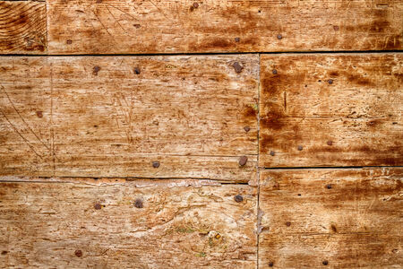 Old wooden door with nails photo