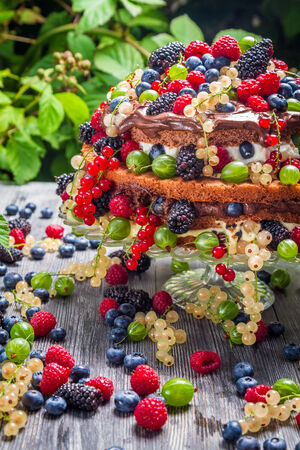Closeup of cake wild fresh berry fruits photo