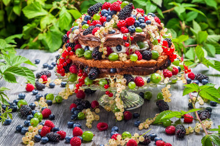 Cake wild fresh berry fruits in forest photo