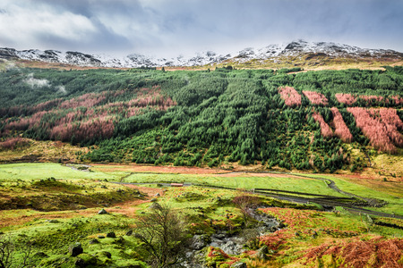 Autumn valley in the mountains, Scotland photo