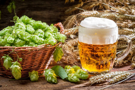 Small beer with a large foam surrounded by hops photo