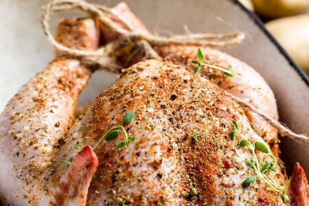 Closeup of spiced raw chicken photo