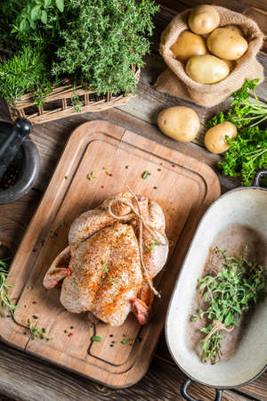 Preparing roast chicken with herbs and vegetables photo