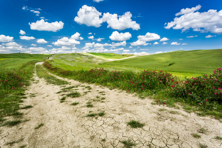 Beautiful view of the valley in Tuscany Stock Photo - 29060146