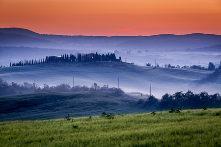 Farm of olive groves and vineyards in foggy sunrise photo