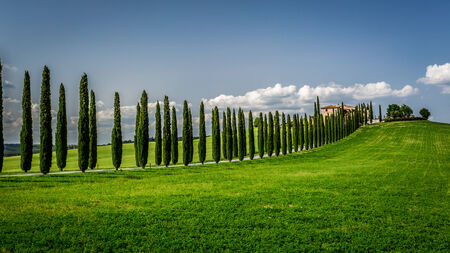 Road with Cypresses to agritourism in Tuscany photo
