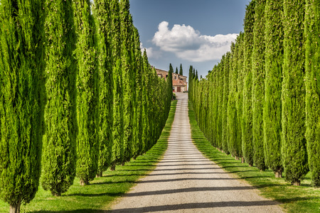 Road to agritourism in Tuscany between cypresses Banco de Imagens
