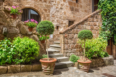 Stone entrance to the ancient house full of plants photo