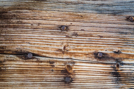 Old wooden background with nails photo