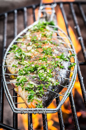 Grilled fish on the rack photo