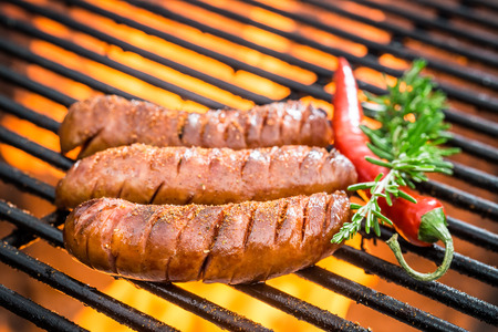 Hot sausage on the grill with fire photo