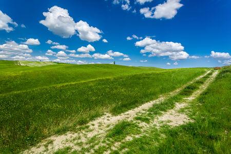 Cracked dirt road between green fields photo