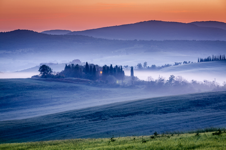 san quirico d'orcia: Farm of olive groves and vineyards in foggy morning