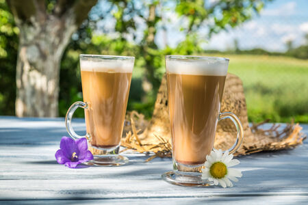 Coffee latte in a sunny garden photo