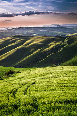 san quirico d'orcia: Beautiful view of green fields and meadows at sunset in Tuscany Stock Photo