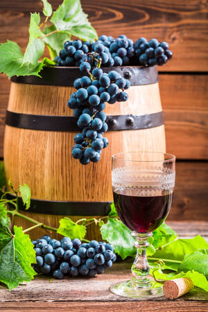 Glass of red wine and grapes in the cellar photo