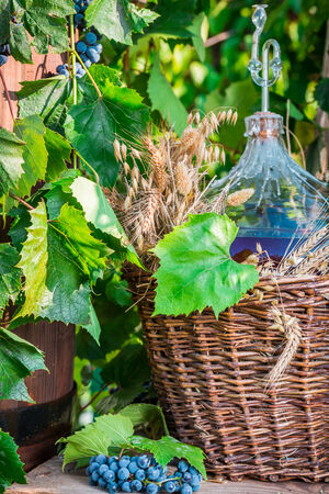red oil lamp: Red wine in a wicker basket Stock Photo