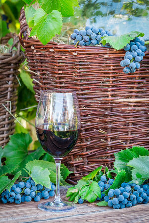 red oil lamp: Glass of red wine and a wicker basket with grapes Stock Photo