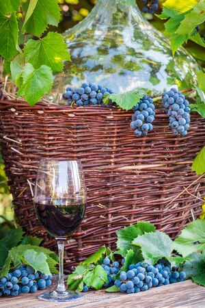 Red wine, wicker basket and grapes photo