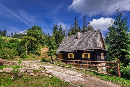 夏天山上的小木屋