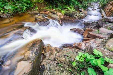 pine creek: Rushing mountain stream in summer