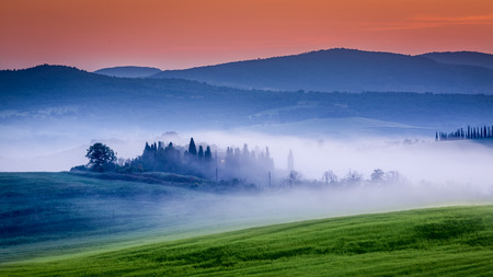 san quirico d'orcia: Farm of olive groves and vineyards in foggy sunrise