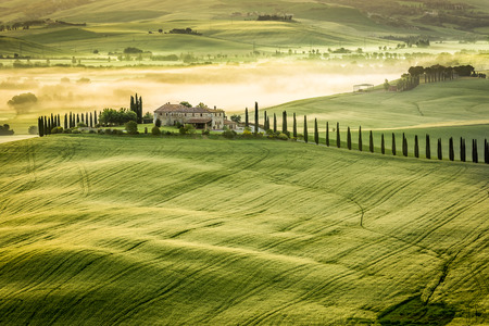 Foggy Valley in the morning, Tuscany photo