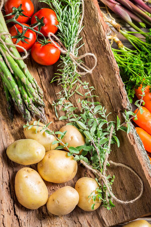 Various fresh vegetables on bark photo
