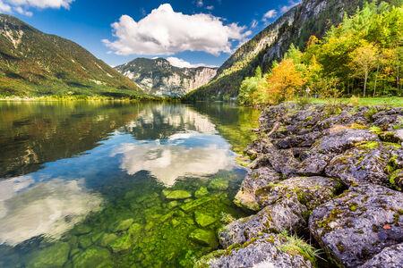 Autumn trees near the mountain lake in Alps photo