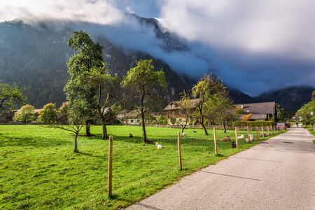 Pasture in a small village in the Alps photo
