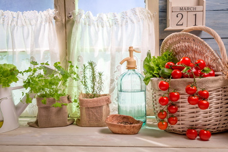 lite food: Sunny kitchen full of vegetables and herbs Stock Photo