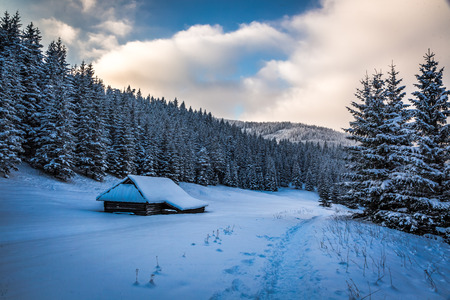 natue: Sunset in mountain valley in winter Stock Photo