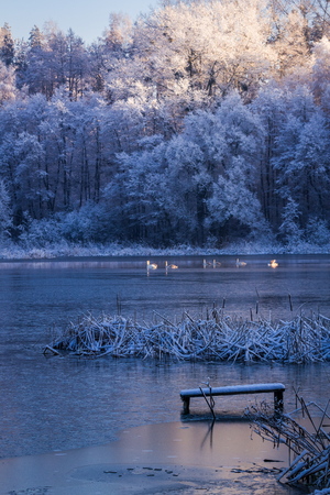 Sunrise over the lake in winter photo