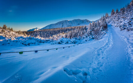 Winter path in the mountains at sunrise photo