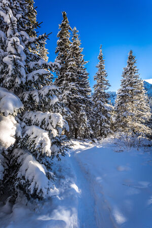 giewont: Winter snowy mountain trail