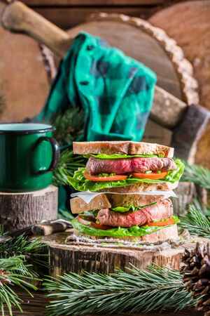 woodcutter: Homemade big sandwich for woodcutter