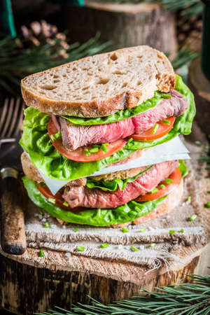 woodcutter: Sandwich with meat and vegetables for woodcutter