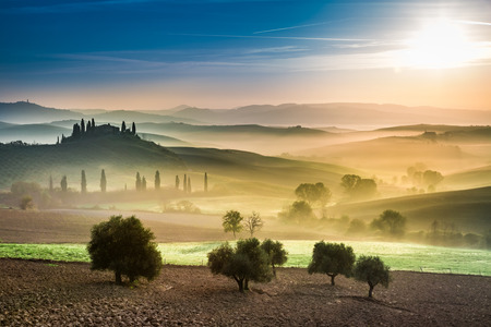san quirico: Gold and green fields in the valley at sunset, Tuscany