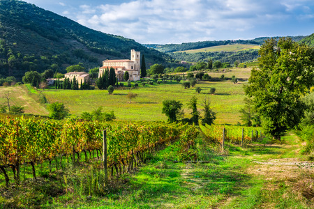 Vineyards and the monastery in Tuscany photo
