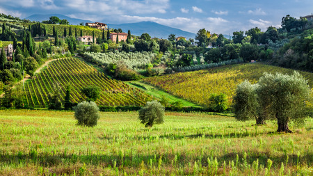 agriculture landscape: View of a small village in Tuscany Stock Photo