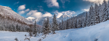 Big panorama of snowy valley in tatra mountains photo